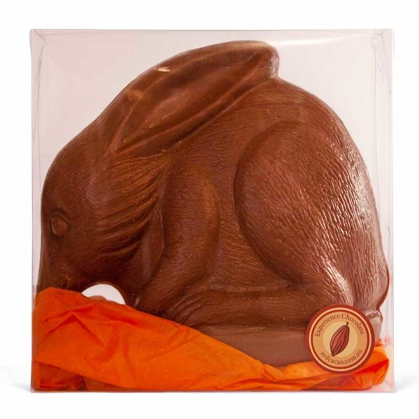 Large milk chocolate easter bilby