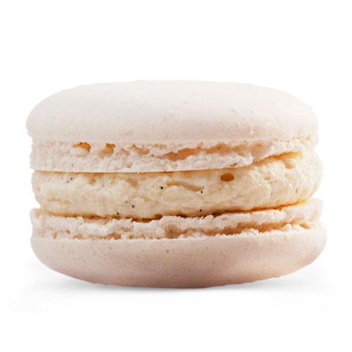 Vanilla flavoured macaron