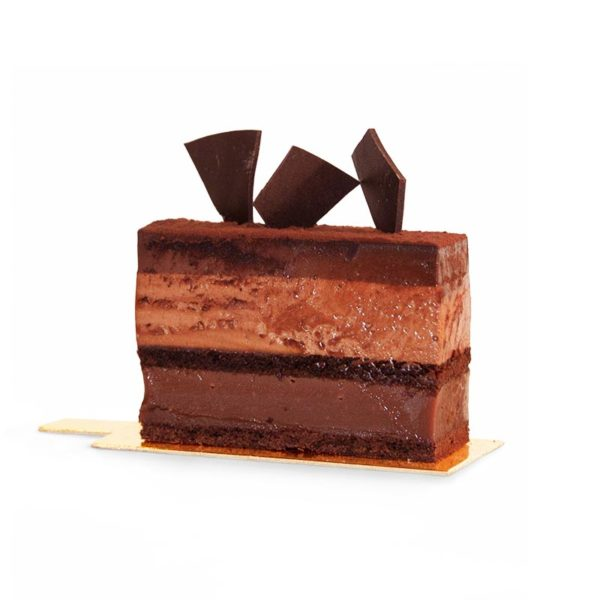 Slice of layered chocolate, caramel, chocolate mousse and dark chocolate ganache cake